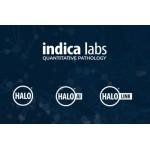 Линбери Лаб – официальный представитель компании Indica Labs в России