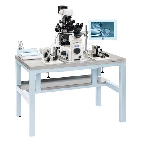 Антивибрационный стол AV1